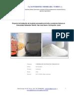 Proyecto_de_Instalacion_de_la_planta_pro.pdf