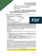 INFORME TÉCNICO - DEFENSA RIBEREÑA ANCHACCLLA