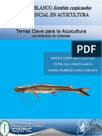 Prieto et al. 2015. El bagre blanco Sorubim cuspicaudus y su potencial en acuicultura.pdf