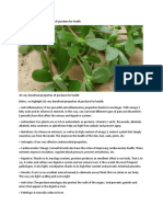 10 very beneficial properties of purslane for health