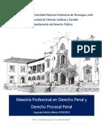 Maestria_DerechoPenal_DerechoProcesal Penal (1)