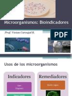 Tema 7 microorganismos Bioindicadores