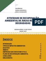 Atividade de Recuperação Ambiental de Áreas Mineiras Degradadas(corr).pdf