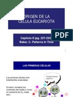 04. Origen de La Celula Eucariota