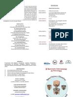 Programa IX seminario (dip) F