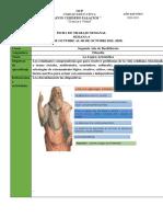 2.- Ficha OCP de Trabajo 2020 2021 01 de Octubre Segundo de Bachillerato
