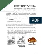 SANIDAD cccc.pdf