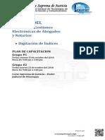 PLAN DE CAPACITACION 09102018 DIGITADORES actualizado - copia rolando salgado 5208