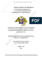 Avila Cuzco, Denys Lorenzo.pdf