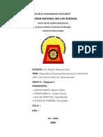 Tarea  Semana 11 Cuestionario Biotecnologia Animal.docx