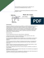 CALIBRADOR PIE DE REY