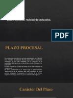 PLAZOS PROCESALE7