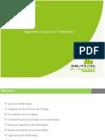 Seguridad y Salud en el Teletrabajo.pdf
