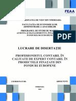model disertatie (1)
