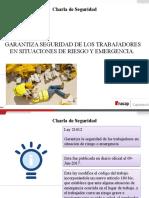 Protocolo Charla de seguridad ley 21012 Daniela Piñones
