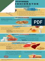 Infografía Carbohidratos