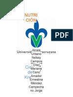 Función del ciclo krebs en el metabolismo (1).docx