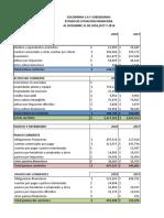 FORMATO BALANCES Y ESTADOS DE RESULTADOS endeudamiento.xlsx