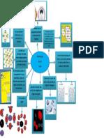mapamentalpropiedadesdelassales-7º.pdf