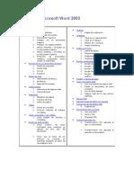 Manual de Microsoft Word 2003