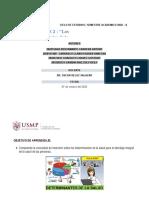 informe seminario 2. Salud publica. Grupo 02