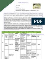Matriz Actividad Complementaria TV S18 y 19 III ciclo Multigrado.docx