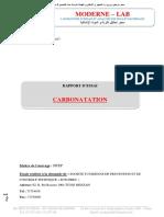 rapport d'essai Carbonatation