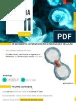 2 Divisão celular, crescimento e regeneração de tecidos vs. diferenciação celular