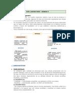 GUÍA SEMANA 9 HISTO (1).pdf