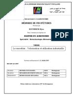 Mémoire (1).pdf
