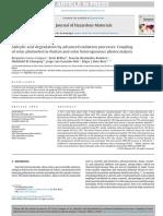 2016 - Salicylic acid degradation by advanced oxidation processes. Coupling of solar photoelectro-Fenton and solar heterogeneous photocatalysis