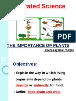Food chain and web presentation.pdf