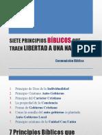 Edita - 7 pps liber