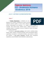 TÓPICOS TEÓRICOS  RFM 0012 AULA IV SISTEMA RESPIRATÓRIO