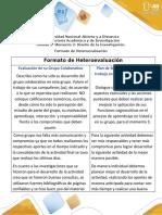 7- Heteroevaluación-Formato