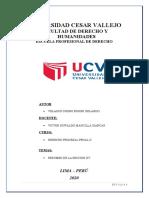 RESUMEN DE PROCESAL PENAL II SECCION XV