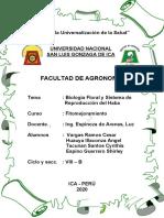 BIOLOGIA FLORAL DEL HABA.docx