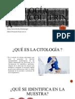Citología cervicouterina