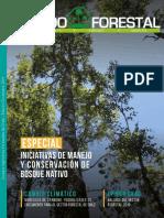 N35_Mundo_Forestal.pdf
