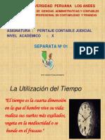 Separata 1 - Perito, Peritaje,etc.pdf