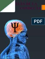 los niveles de la conducta si 5.pptx