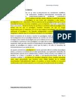 PARADIGMA PSICOANALÍTICO.docx