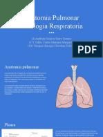 Anatomía Pulmonar