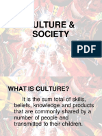 LESSON 2- ASPECTS OF CULTURE AND SOCIETY