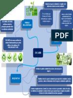 MAPA MENTAL ISO 14000