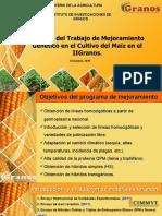 50 ANIVERSARIO IIG-10 años del mejoramiento del maiz