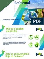 2.1 Gestión amb y PML