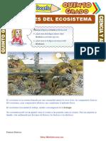 Factores-del-Ecosistema-para-Quinto-Grado-de-Primaria.doc