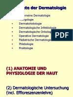 Termeni Dermatologie.pdf