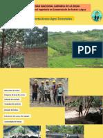 plantaciones forestales (act. 2020)b.pptx